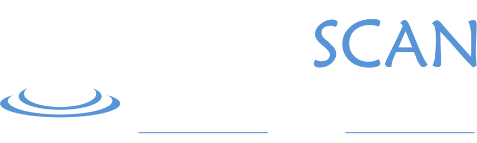 Well Scan light logo